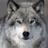 Shadowolfdg's avatar