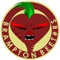 Beet-rs Logo (OLD).png