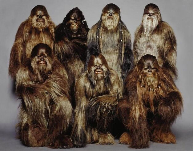 WookieeCrew - Star Wars Alien Races