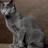 BlueStar777's avatar