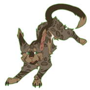 Leopardcall Fullbody