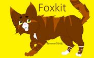 Foxkitttttttttttt