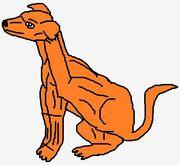 Csscratchhound