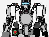 Armorraccoon