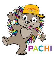 Pachi 1