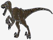 Cswoodraptor
