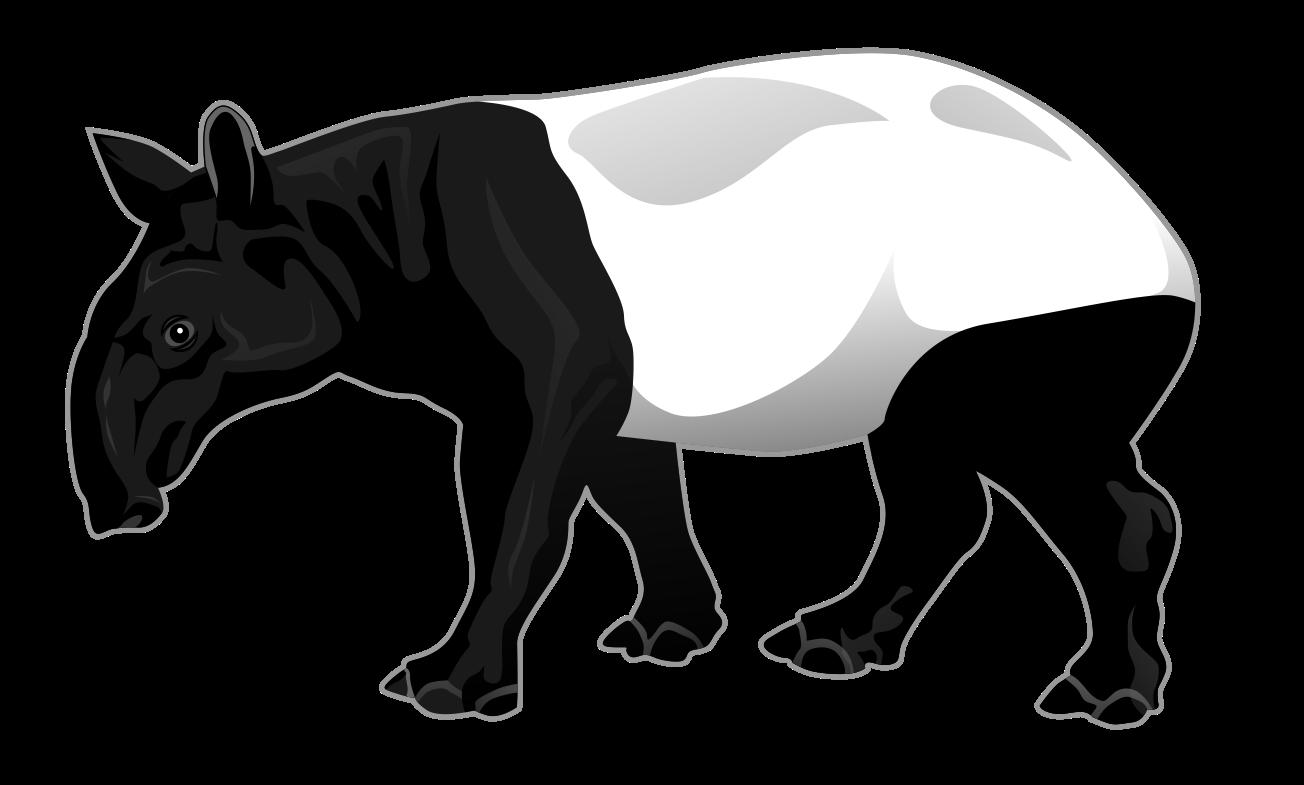 Тапир картинка на прозрачном фоне
