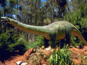 Brontosaurus-dinosaurs-1993647-1024-768
