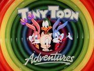Tiny Toons Adventure