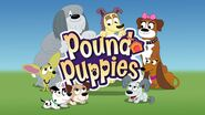 Pound Puppies 2010