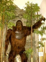 Gigantopithecuspic