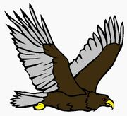 Csguyhawk