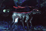 Viperwolfcub