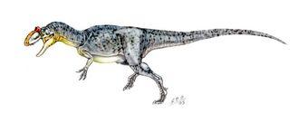 AllosaurusSP