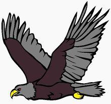 Csbirdbrain