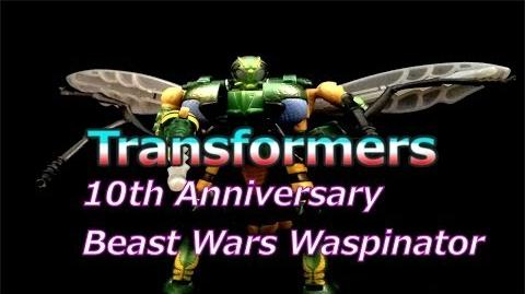 Transformers Beast Wars 10th Anniversary Waspinator Review