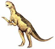 Psittacosaurus 2 big