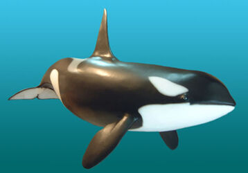 Male-orca-sculpture4