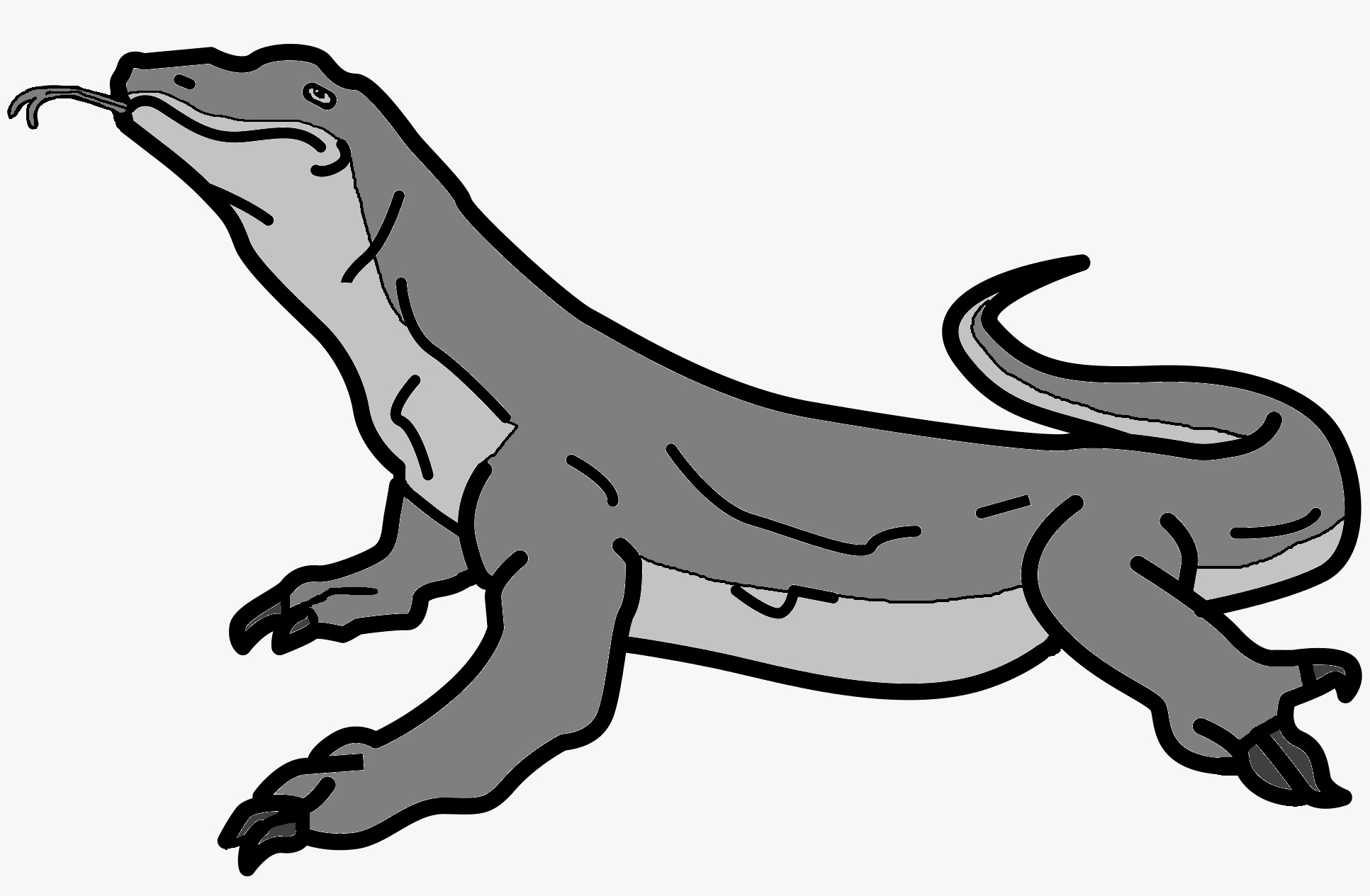 Komodo Dragon Wikipedia: Image - Stoned Komodo Dragon.jpg