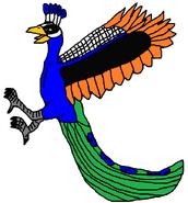 Fighting Peacock