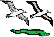 Flying Seagull, A Swimming Eel, And A Flying Albatross