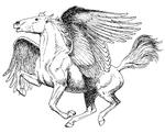 Pegasus (PSF)