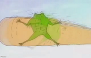 Frogbaseballsnip
