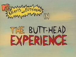 S02E27 - The Butt-head Experience