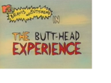 The Butt-head Experience