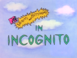 Incognito Title Card