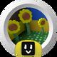 Sunflower Hotshot