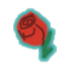 Fis rose