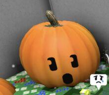 The pumpkin's face