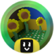 Sunflower Grandmaster