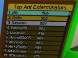 Top Ant Exterminators