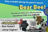 Bear Bee Promo