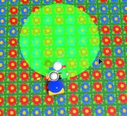 Зелёный круг это место где упадёт кокос