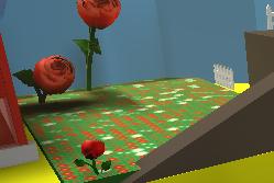 Rose Field
