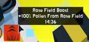 RoseFieldBoost