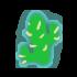 Fis cactus