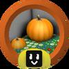 Pumpkin Cadet