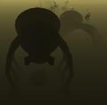 Cavespider