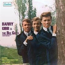 The Bee Gee's Sing and Play 14 Barry Gibb Songs