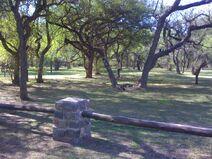 Parque tau
