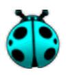 Cyan Ladybug