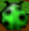 BeetleCoventryCoveMini-mapBeetleBattle