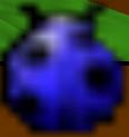 BeetleWickedWoodsMini-mapBeetleBattle