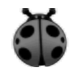 Grey Ladybug