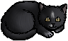 Shadowclaw.kitten