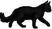 Nightheart.kitten.png